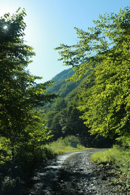 易老渡までの道4