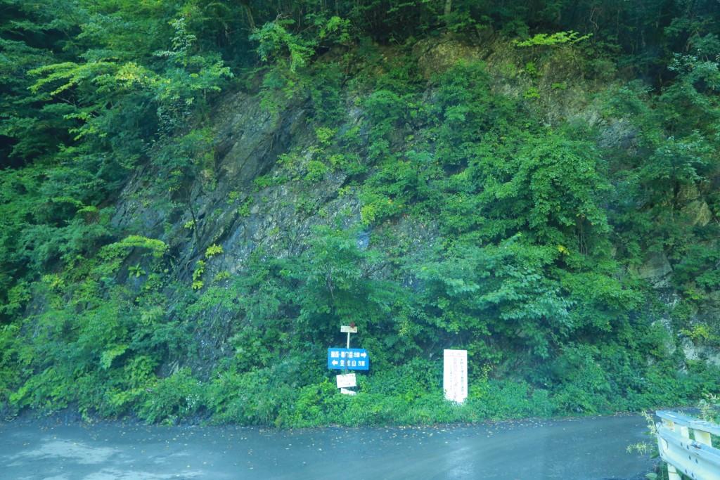 易老渡までの道5
