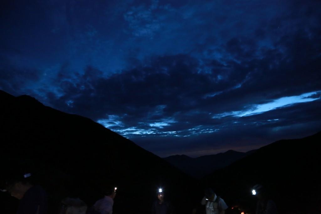 夜明け前の薊畑