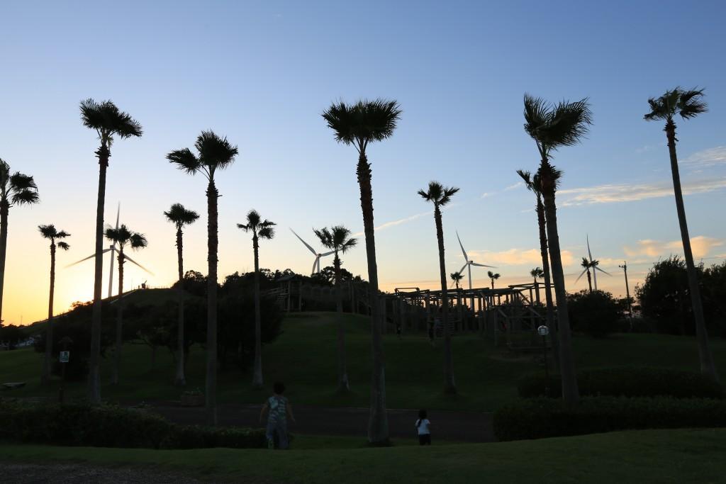 竜洋海洋公園の夕暮れ2
