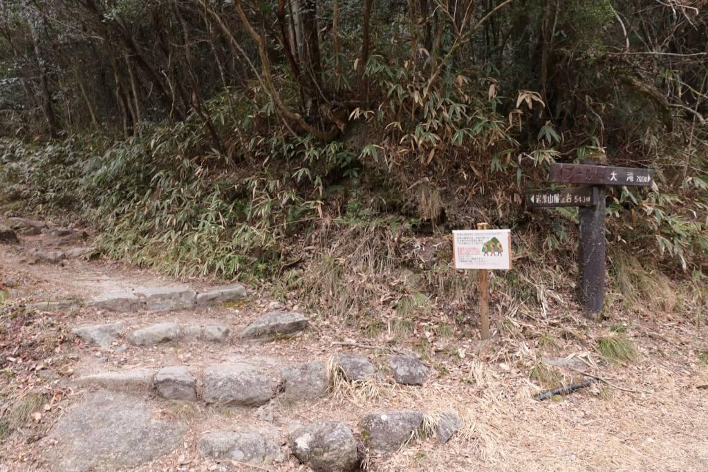 瀬戸大滝 分岐2