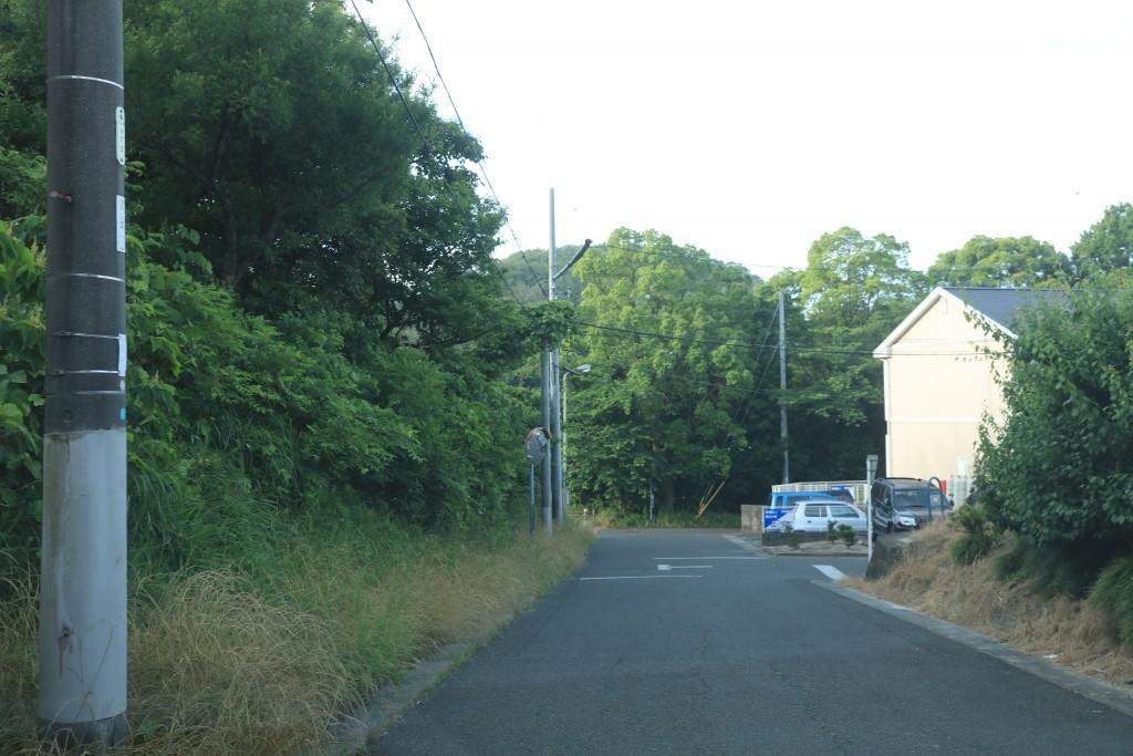 加木屋緑地 第2駐車場までの道3