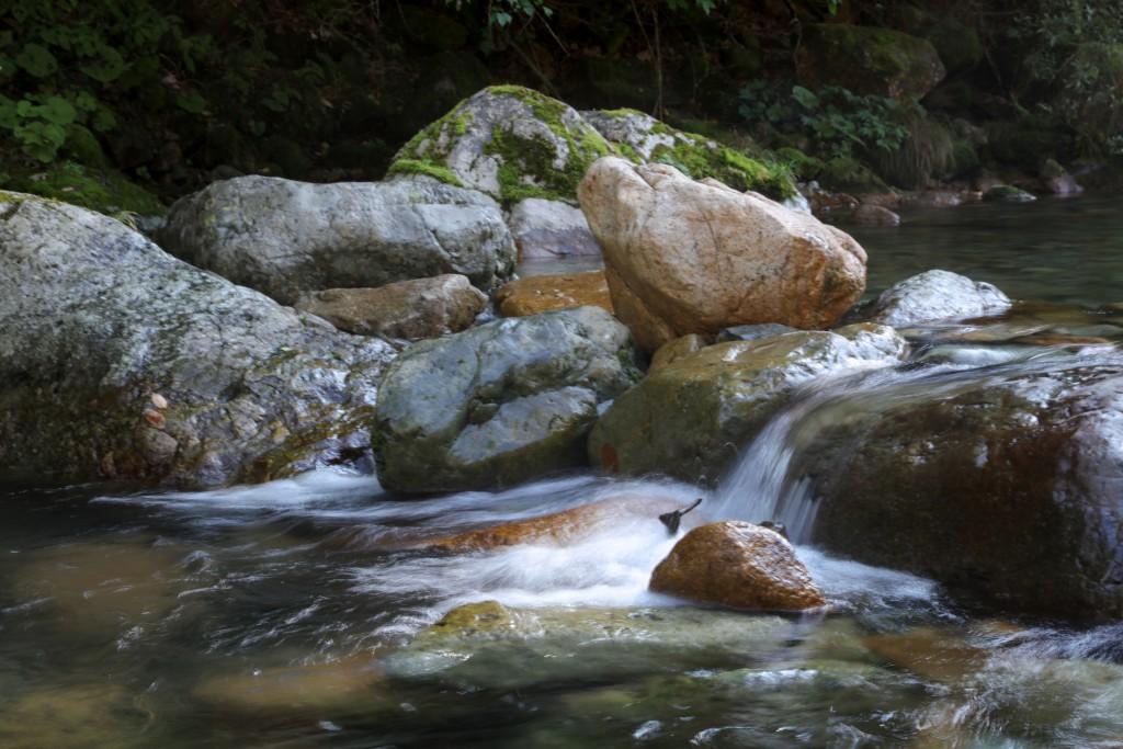 板取キャンプ場 板取川の流れ