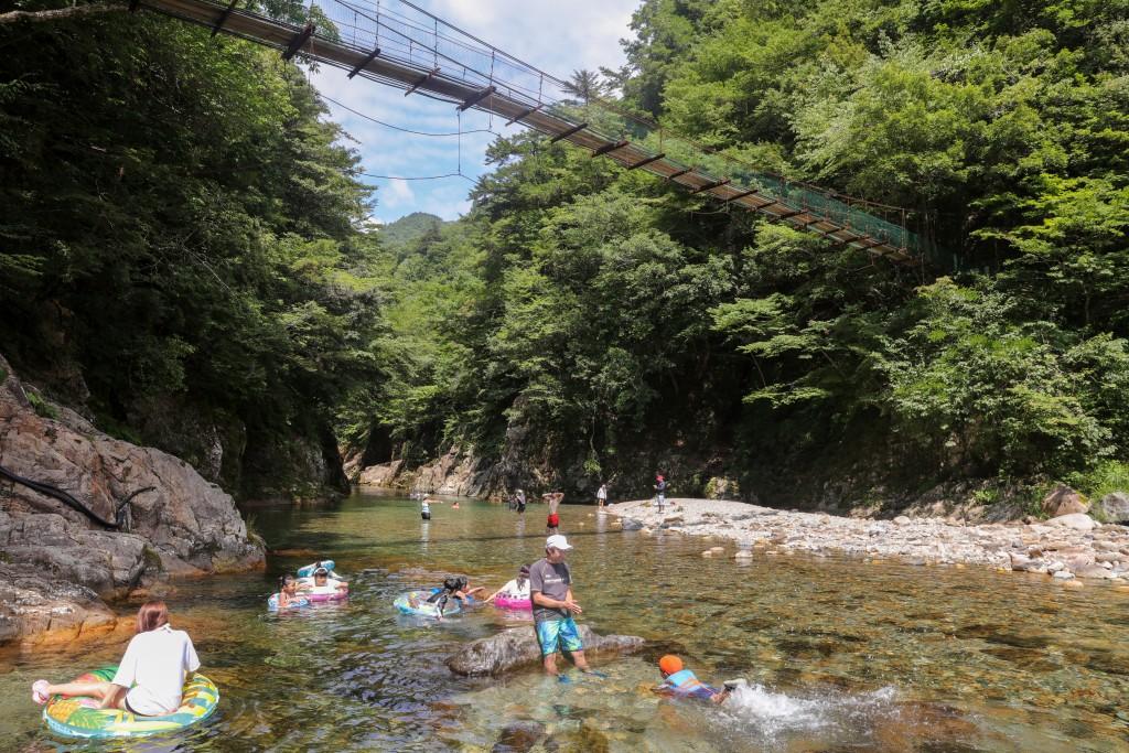 板取キャンプ場 吊り橋の下
