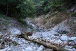 【遭難記録まとめ】三重 藤原岳 〜1,000級の低山でなぜ遭難したのか?〜