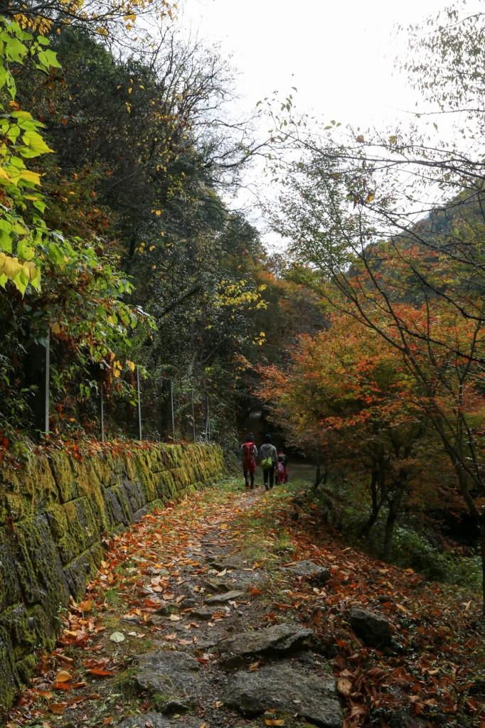 王滝渓谷 龍門橋〜歌石園地2