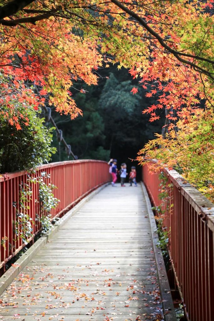 王滝渓谷 中之瀬大橋
