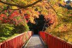 王滝渓谷 愛知で子連れ紅葉ハイキングができる穴場スポットの紹介!