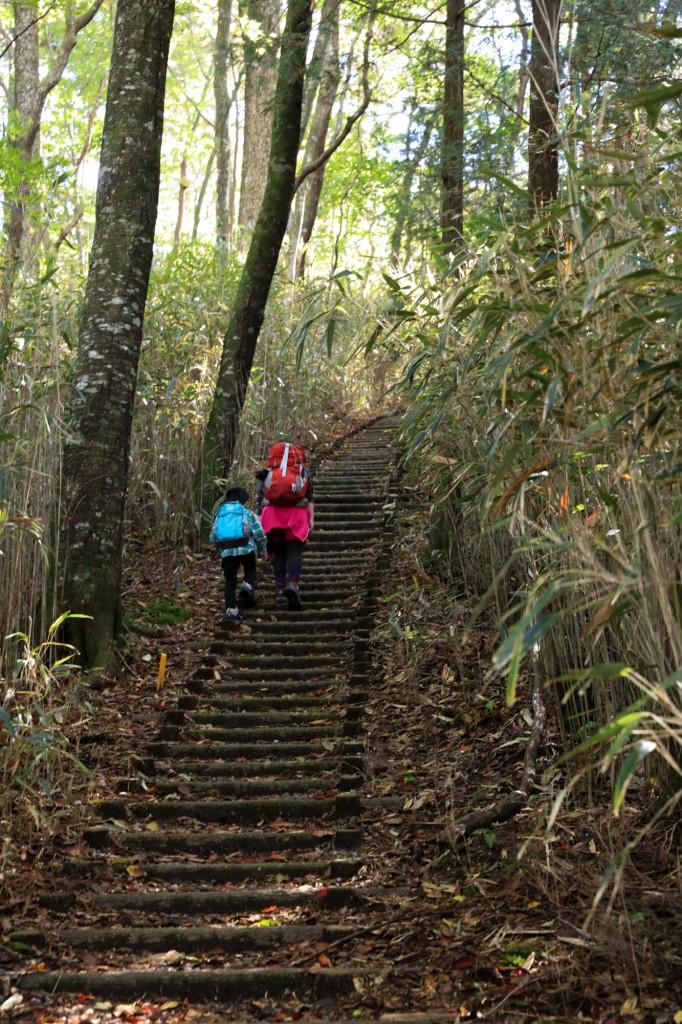 きららの森 急登の階段