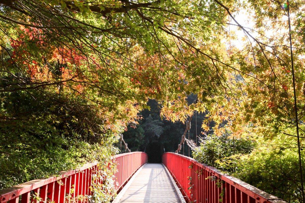 王滝渓谷 中之瀬大橋 紅葉