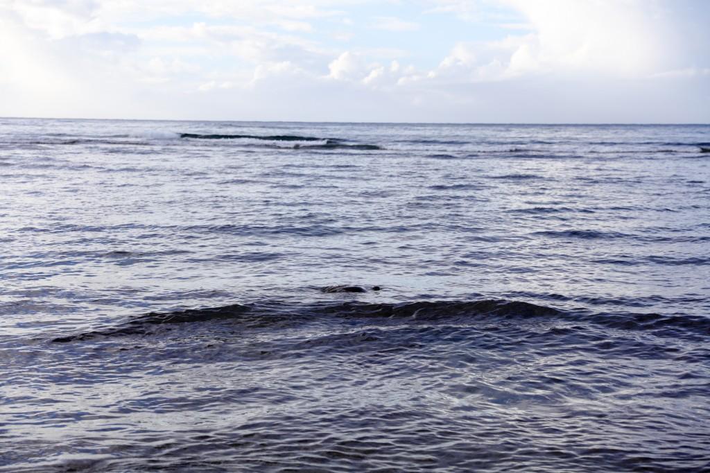 アリービーチ ウミガメ3