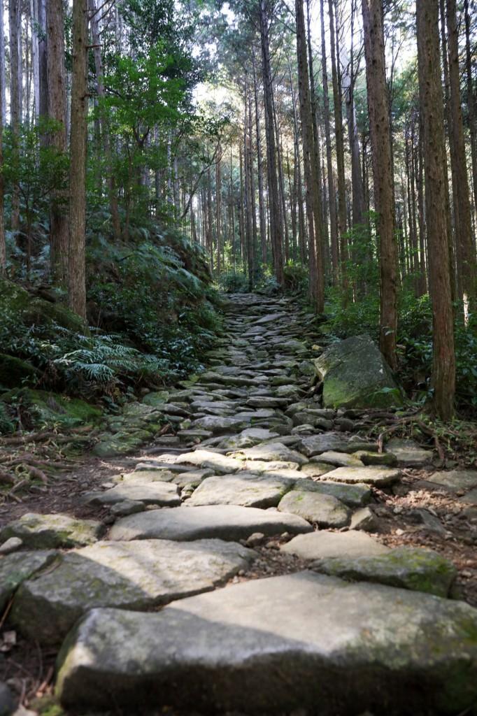 熊野古道 馬越峠 石畳3