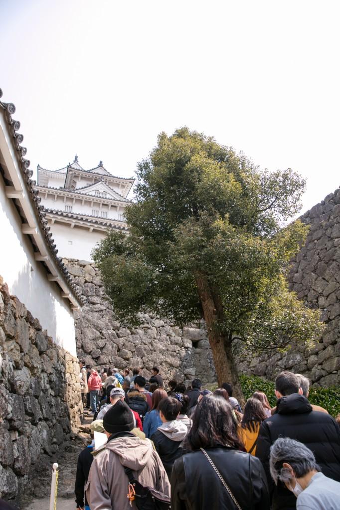 姫路城 連休中の混雑具合