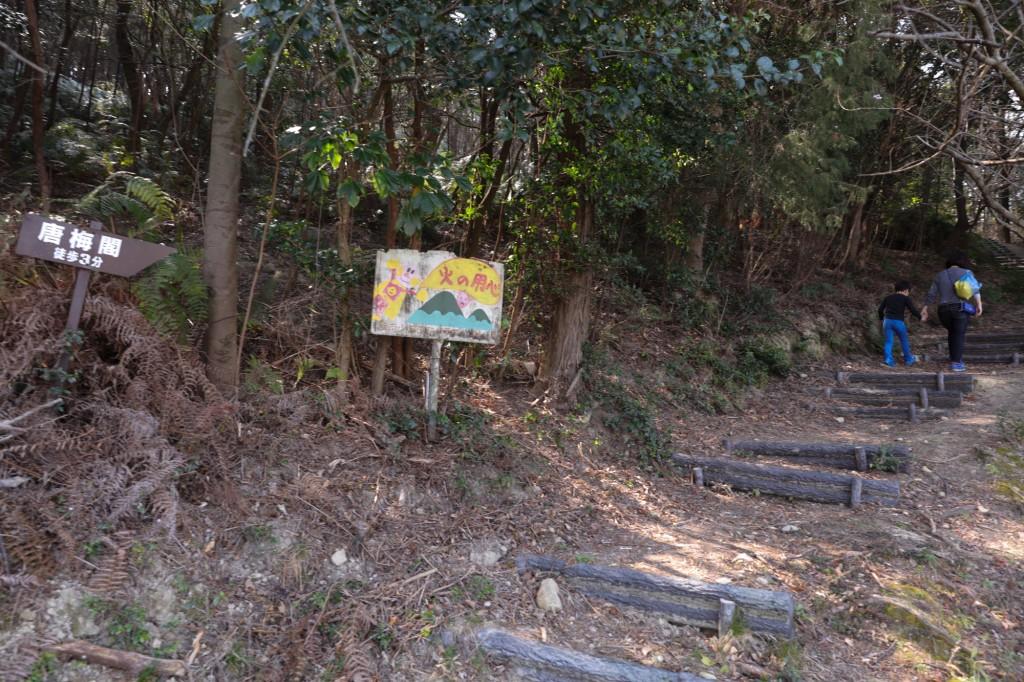 世界の梅公園 唐梅閣までの遊歩道1