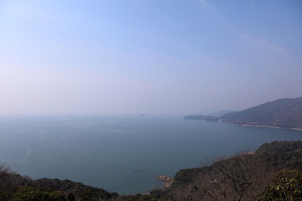 世界の梅公園 展望台からの眺め