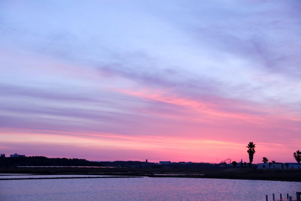 伊勢志摩エバーグレイズ 朝日の水辺
