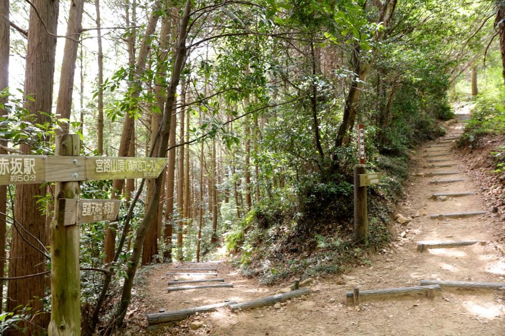 宮路山 森林浴コース2