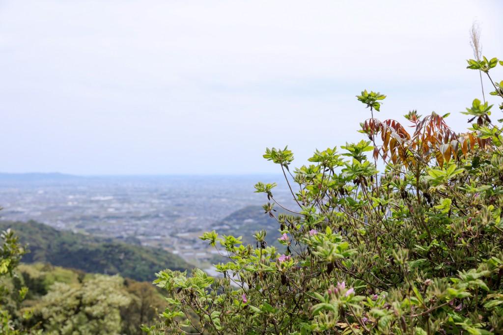 宮路山山頂付近からの眺め