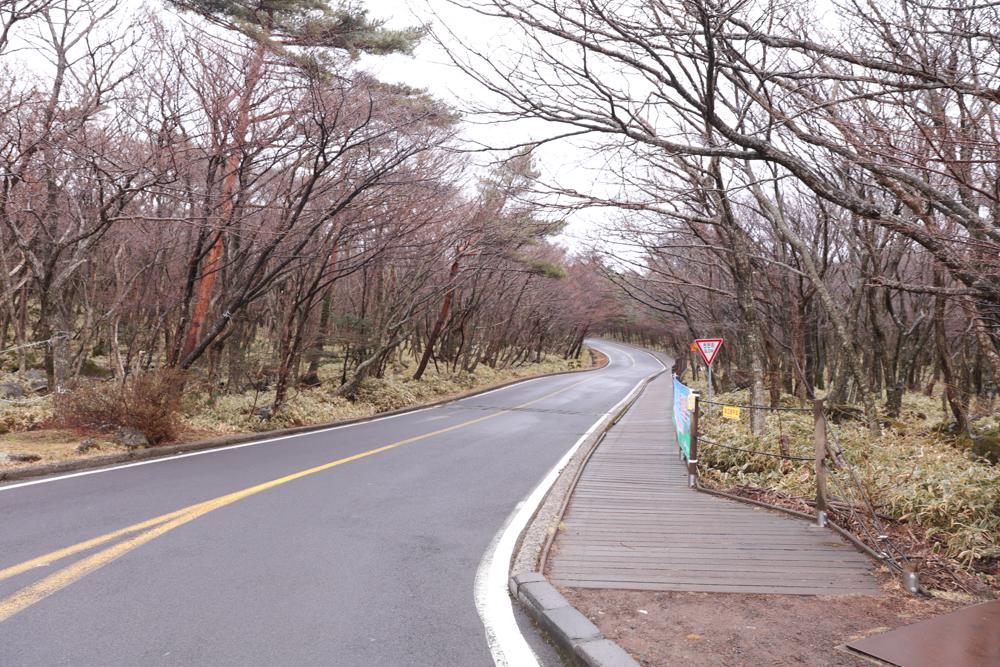 漢拏山 霊室 登山口までの道1