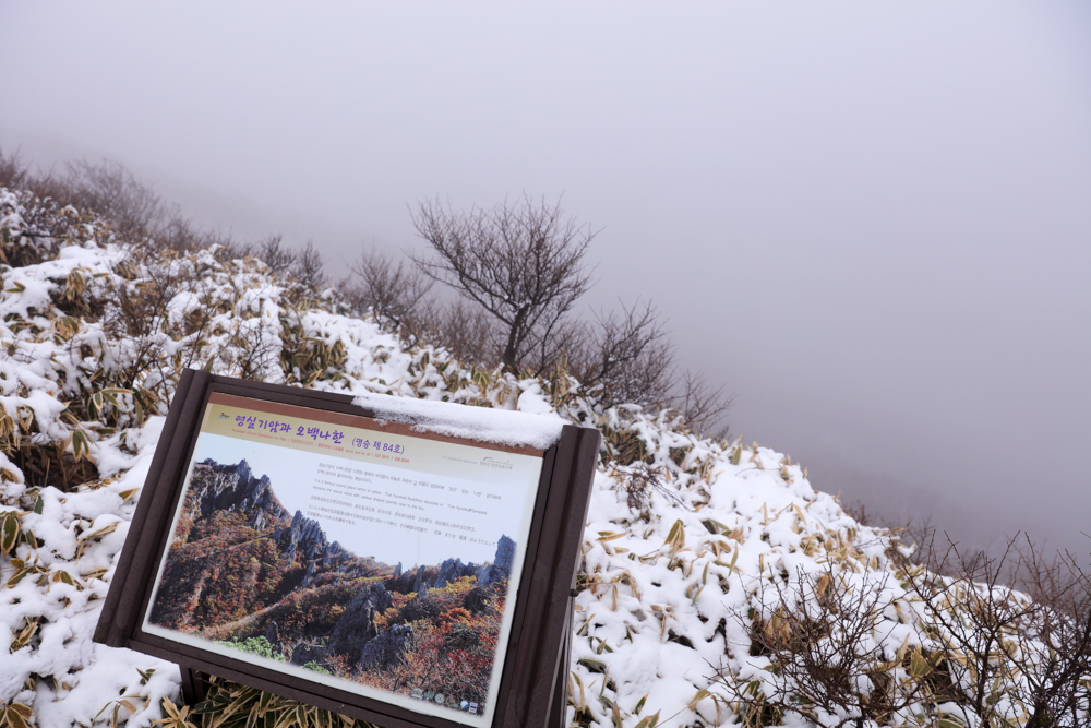 漢拏山 霊室ルート 登山口〜小屋3