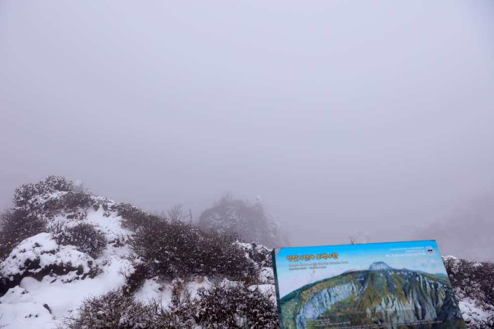 漢拏山 霊室ルート 登山口〜小屋5