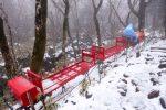 漢拏山(ハルラサン) オリモクルート下山時に出会ったモノ【2017年3月韓国最高峰 漢拏山登山10】