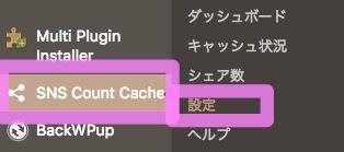 SNS Count cache設定1