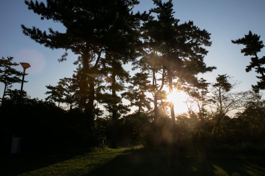 伊良湖キャンプ場 フリーサイト 朝日