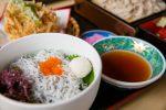 伊良湖でしらす丼を食べるなら「めん処 はないち」はいかが?