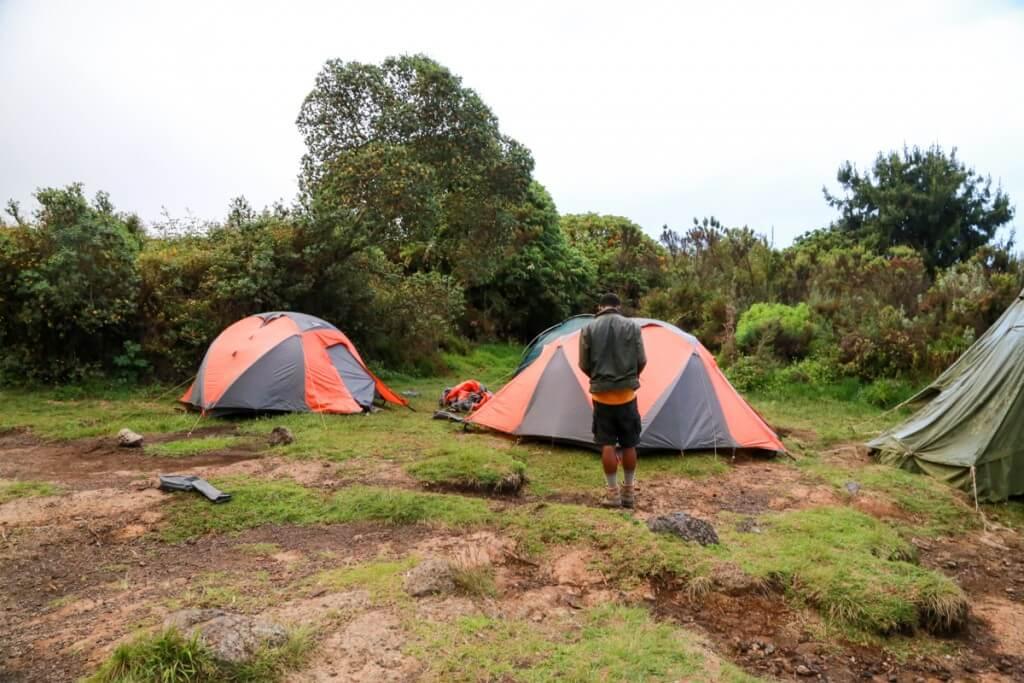 キリマンジャロ登山 Simba Camp