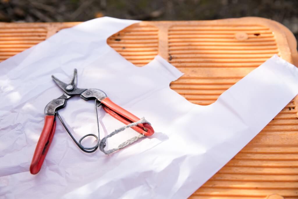 愛知県東海市 みかん狩り クラインガルテン ハサミと袋