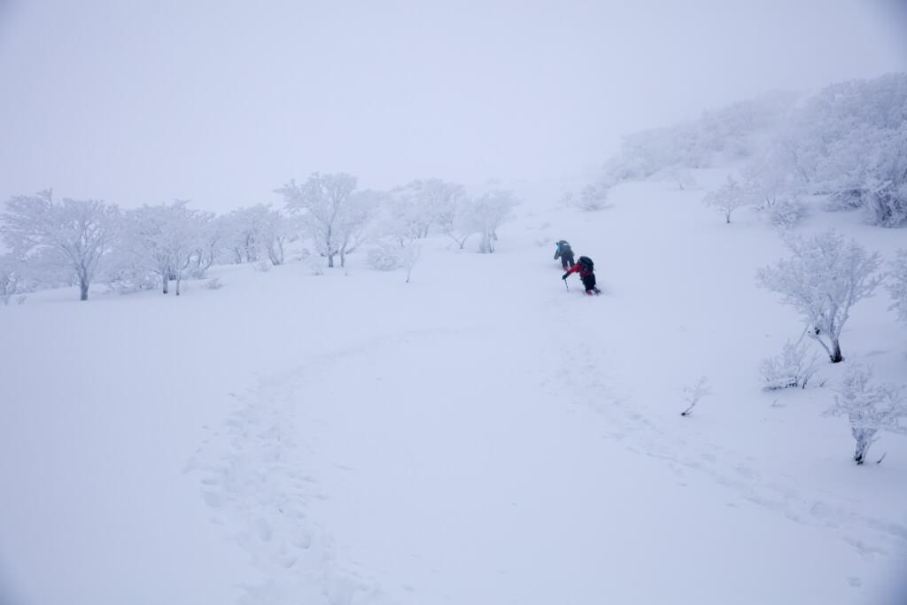 冬の伊吹山 九合目
