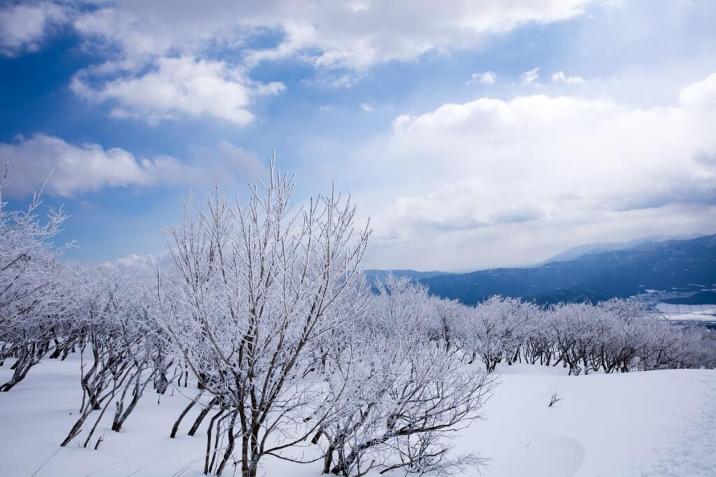 冬の伊吹山 五合目からの景色