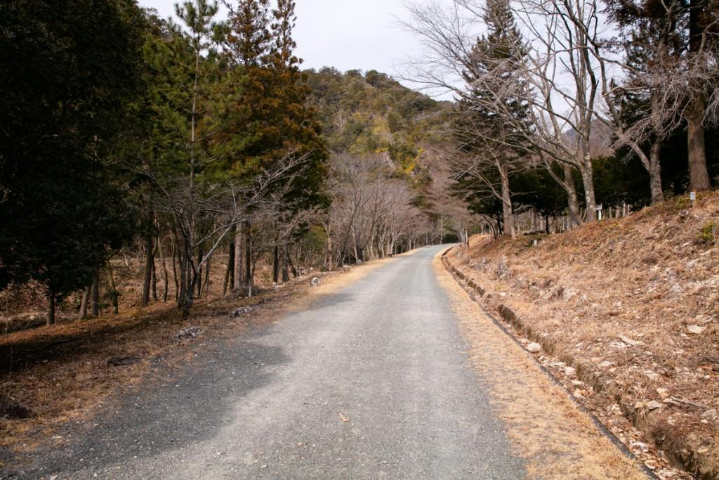 愛知県民の森 ハイキングコース