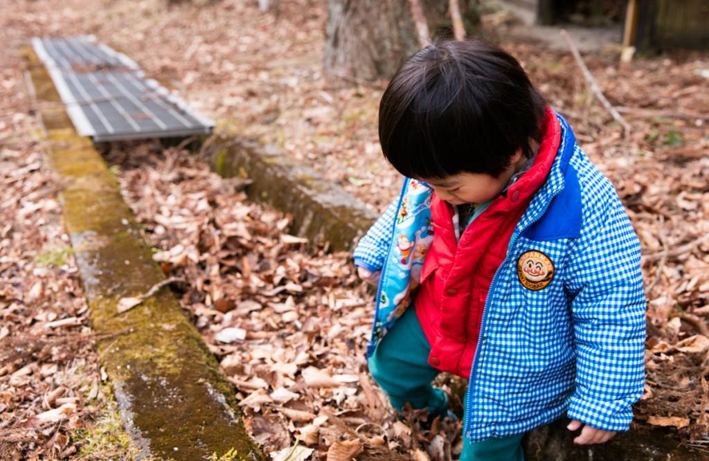 愛知県民の森の落ち葉にハマる次男