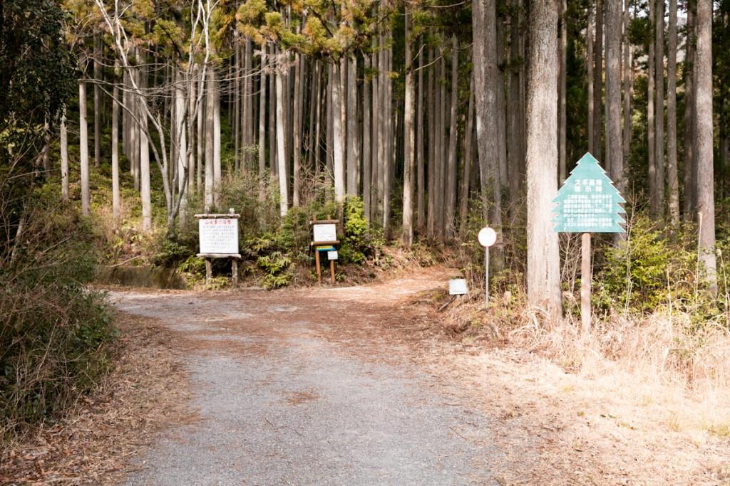 愛知県民の森 ハイキングコース 北尾根分岐点