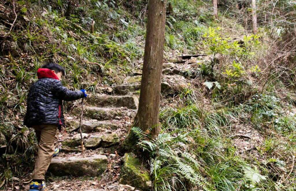 愛知県民の森 亀石の滝からの登り