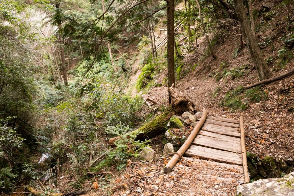 愛知県民の森 下石林道への下り2