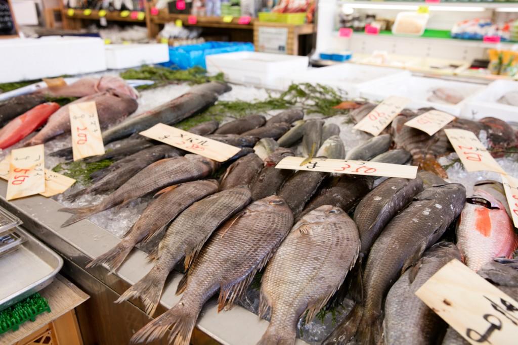 志摩オートキャンプ場近くの魚屋 丸義商店 鮮魚