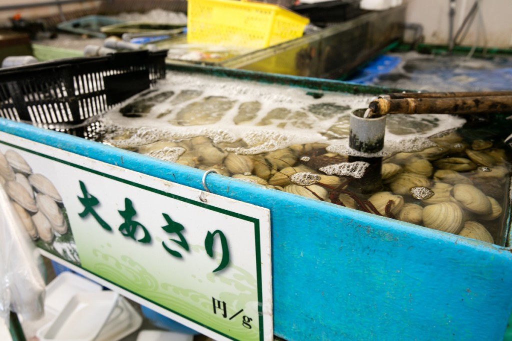 志摩オートキャンプ場近くの魚屋 丸義商店 大アサリ