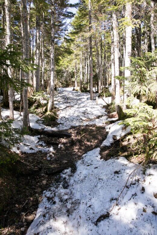 長塀尾根の残雪2