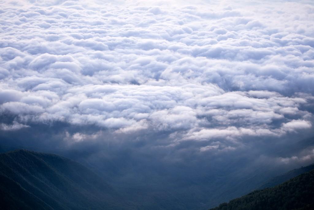蝶ヶ岳からの雲海3