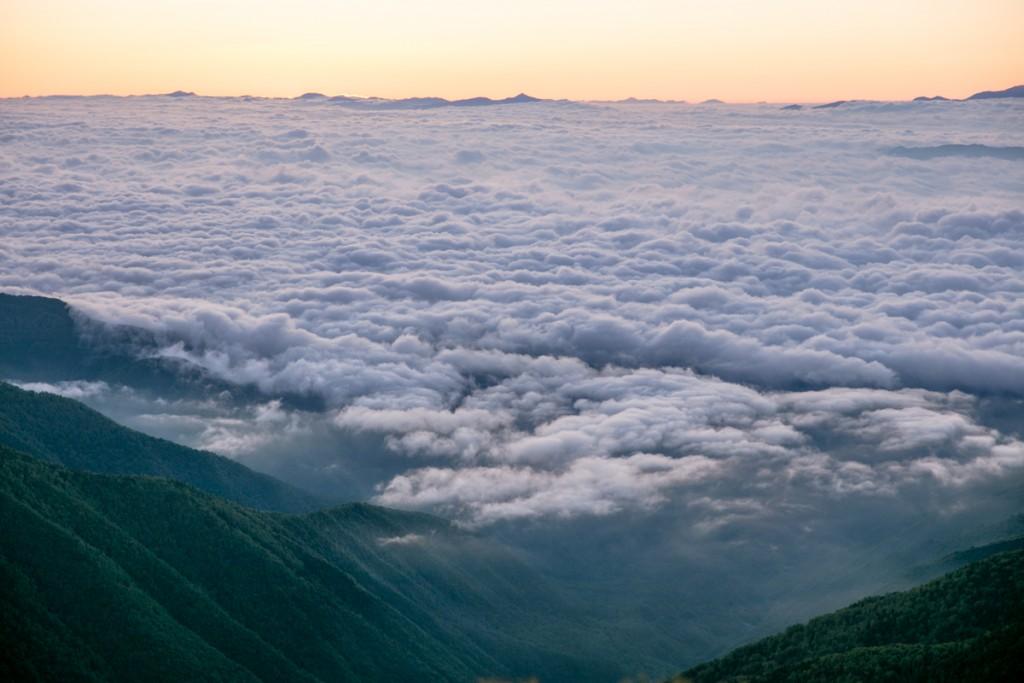 蝶ヶ岳からの雲海5