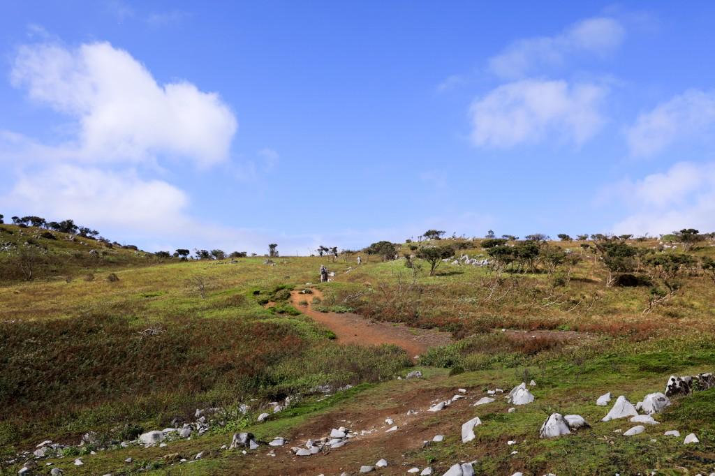 低い山の道迷い遭難 藤原岳