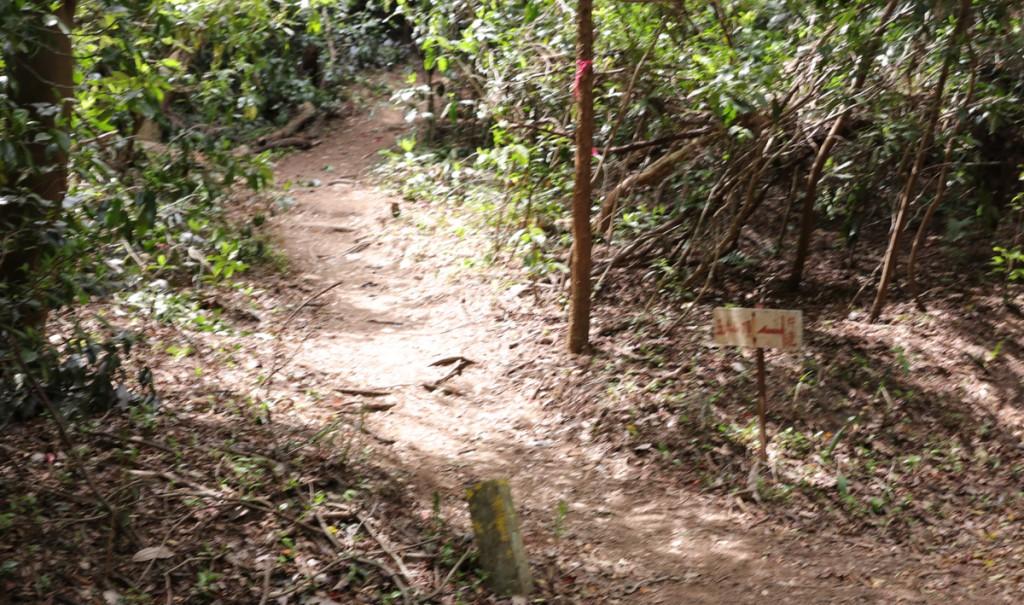 登山道 不明瞭な道標