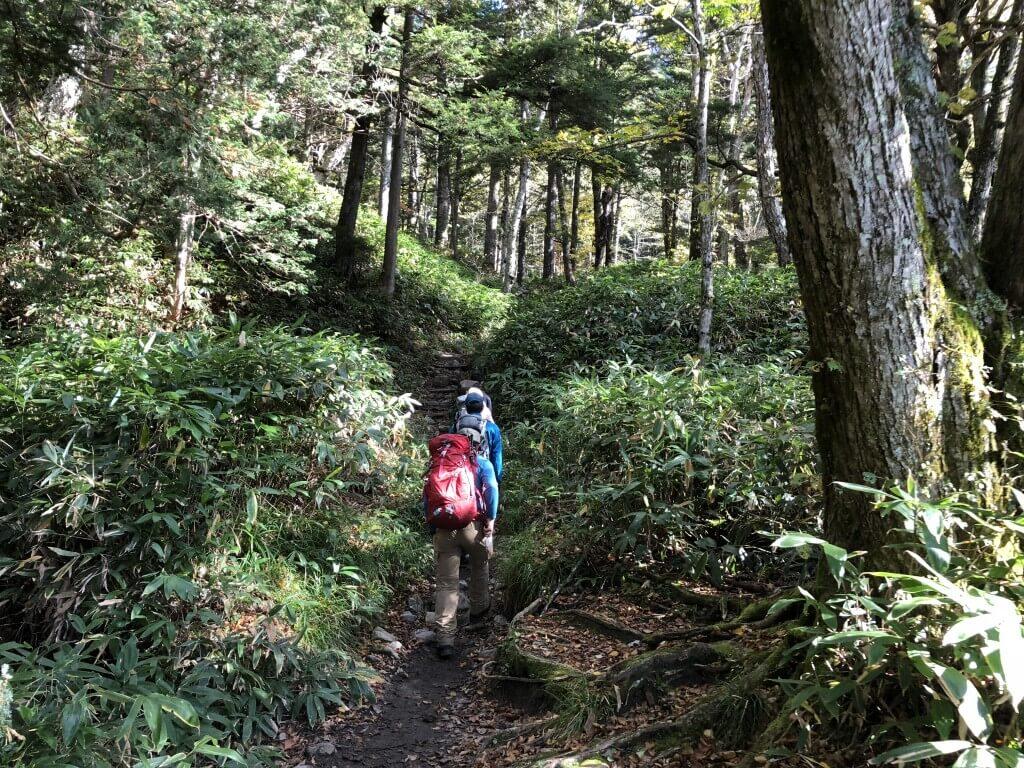 岳沢登山道