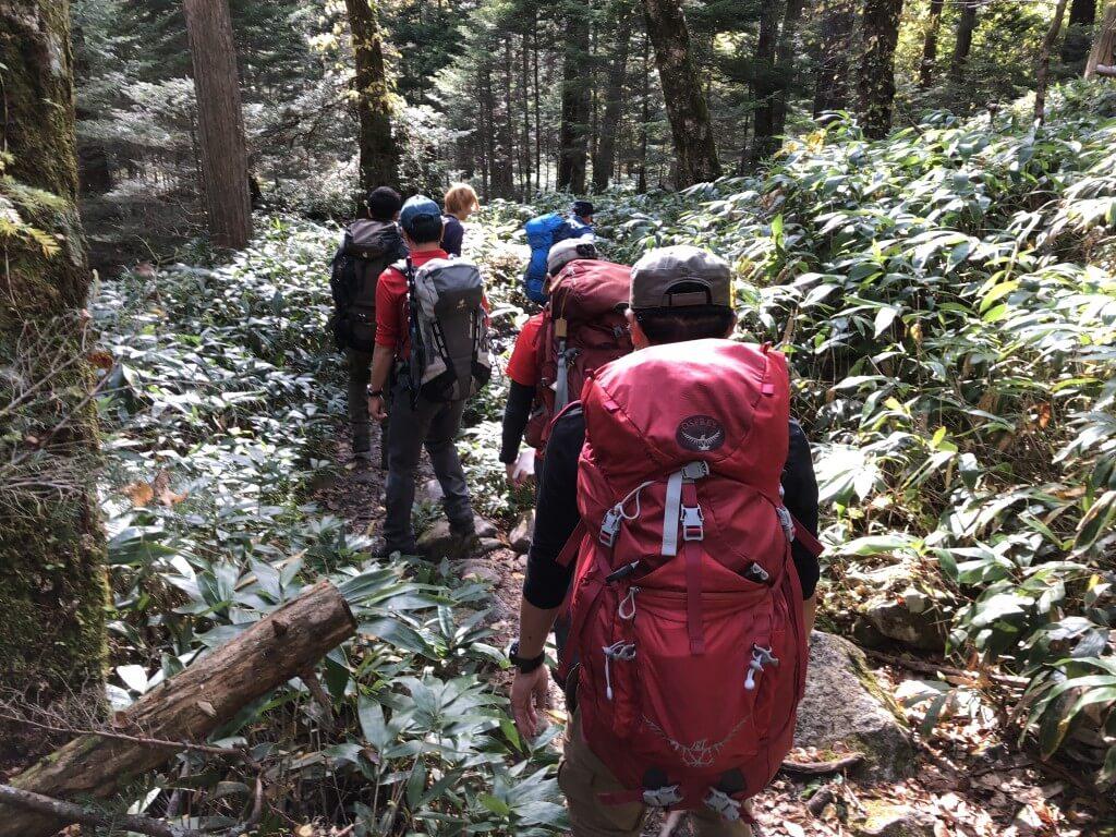 岳沢登山道から下る