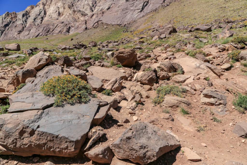 アコンカグア登山 コンフルエンシアから下山3