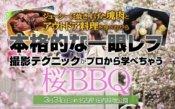 桜BBQ&カメラセミナー@庄内緑地公園
