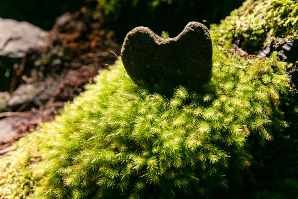 和歌山県新宮市 桑ノ木の滝 ハイキングコースにあるハートの岩